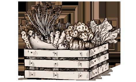 azienda agricola l'oca di sant'albino verdure orto